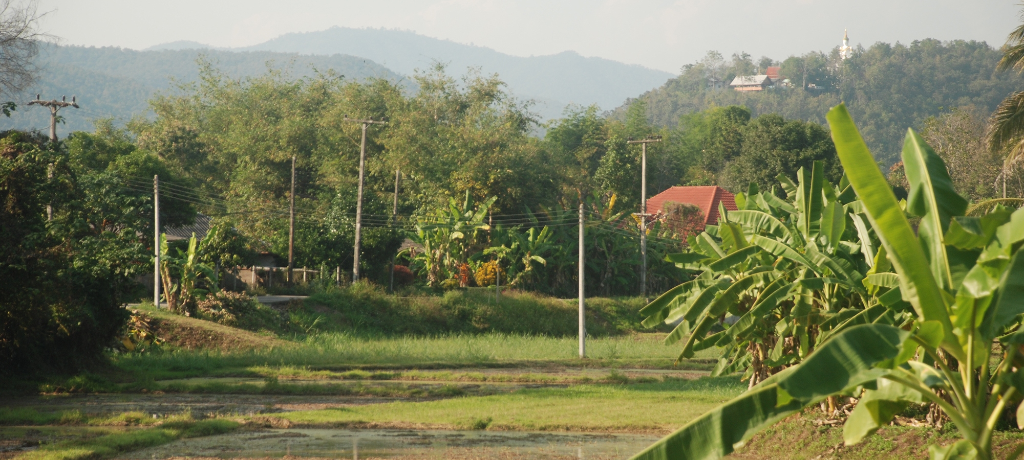 Around the Doi Saket, Studio 88 Artist Residency, Chiang Mai