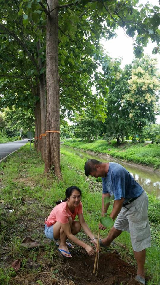 Aom and Sak planting teak trees, Studio 88 Artist Residency, Chiang Mai